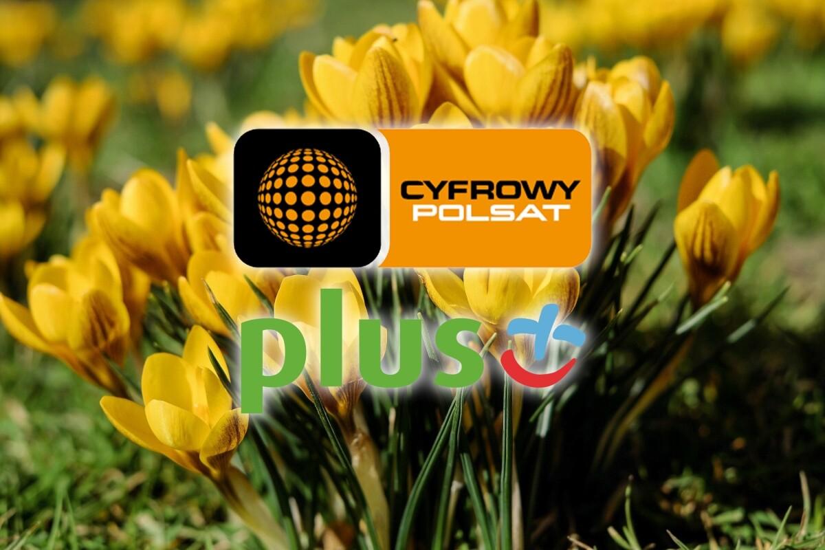 Cyfrowy Polsat Na Wiosne Nawet 27 Kanalow Tv W Otwartym Oknie Telepolis Pl